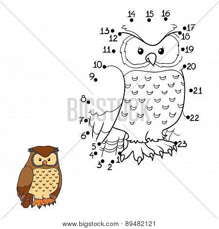 Numbers Game (owl, Bird)