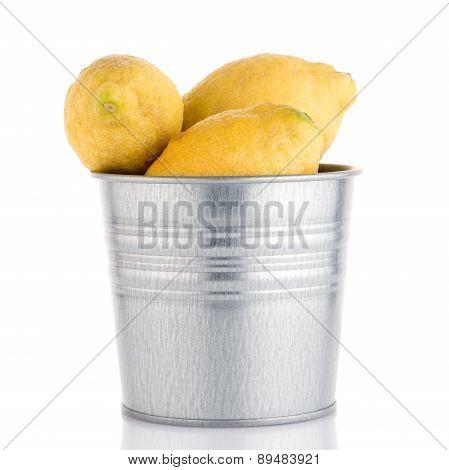 Bucket With Lemons