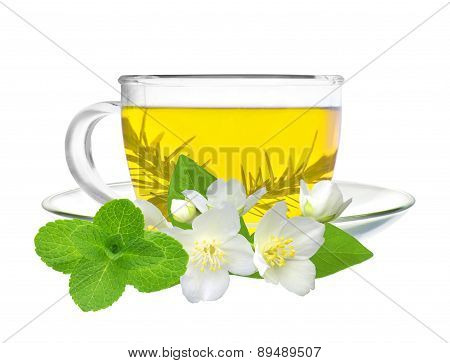 Cup Of Green Tea With Jasmine Flowers And Mint Herb Isolated On White