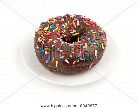 Chocolate Donut On A White Dish