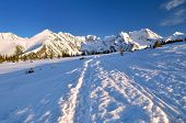 stock photo of snowy hill  - Snowy trail leading to the Gasienicowa valley in National Park in the Tatra Mountains - JPG