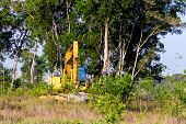 foto of vegetation  - Heavy equipment strips all the vegetation off the side of a forest - JPG