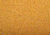 picture of mustard seeds  - Close up of Yellow Mustard Seeds arrange as background  - JPG
