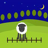 foto of counting sheep  - One cute sheep standing near the low fence with eyes screwed up and fears to jump green hills with trees behind it dark navy blue colored starry sky and big yellow crescent - JPG