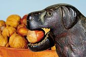 picture of nutcracker  - Novelty dog nutcracker with a hazelnut in it - JPG