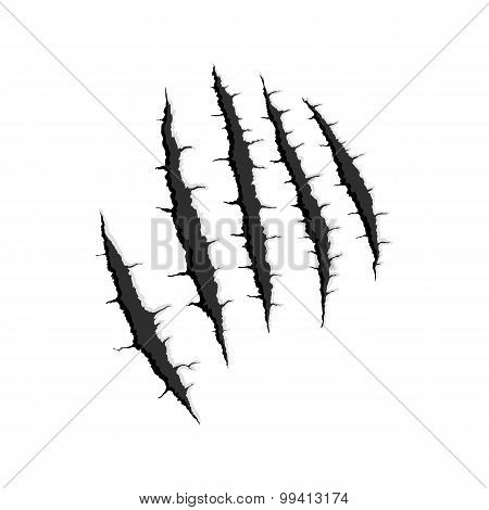 Five vertical trace of monster claw