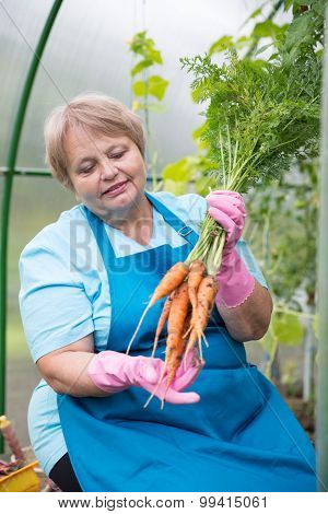 Smiling pensioner with carrot at green house
