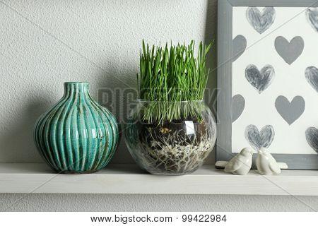 Transparent pot with fresh green grass on shelf