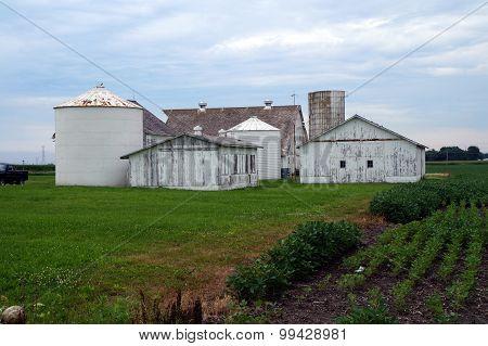 White Farm Buildings