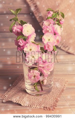 Beautiful fruit blossom in glass on table