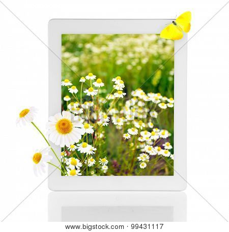 Tablet with nature wallpaper on screens isolated on white
