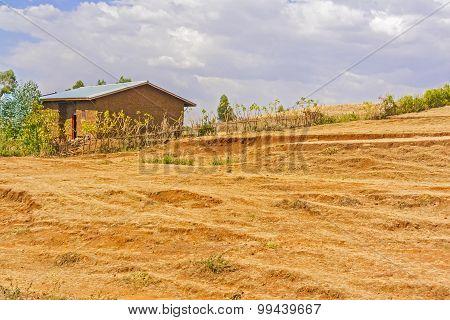Rural Landscape In Ethiopia
