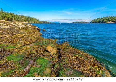 Majestic mountain lake in Canada. Drumbeg Park Lake Trail View.