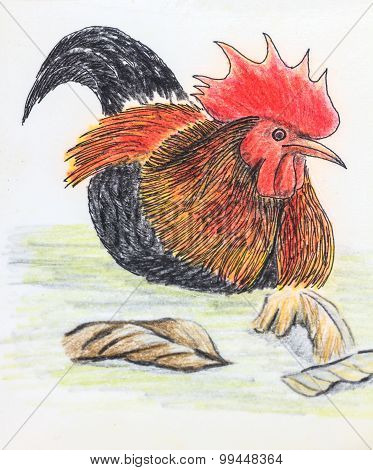 Jungle Fowl Bird Drawing