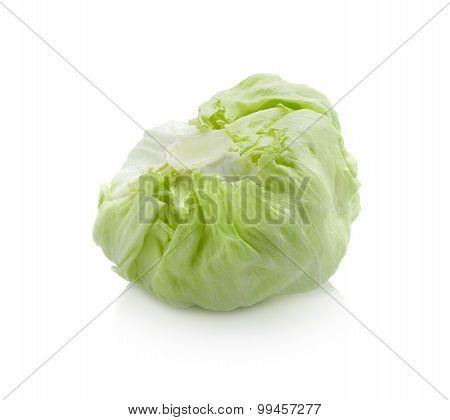 Iceberg Lettuce Isolated On White Background