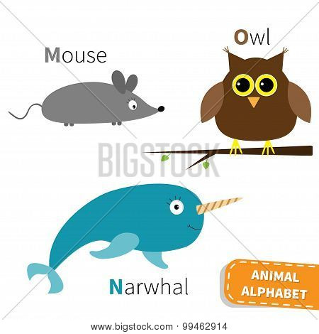 Letter M N O Mouse Narwhal Owl Zoo Alphabet. English Abc With Animals Education Cards For Kids Isola