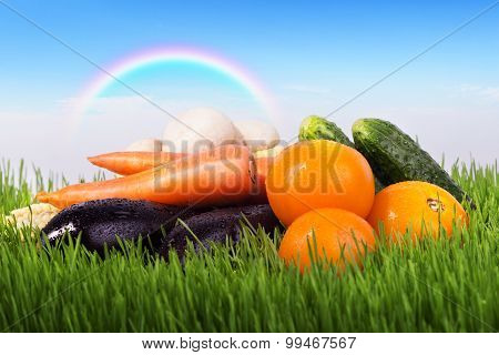 Vegetables On A Green Meadow