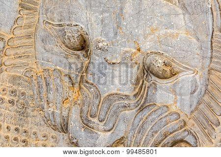 Lion relief detail Persepolis