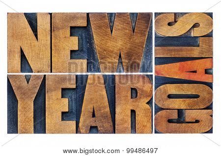New Year goals - resolution concept - isolated word abstract  in letterpress wood type printing blocks stained by color inks