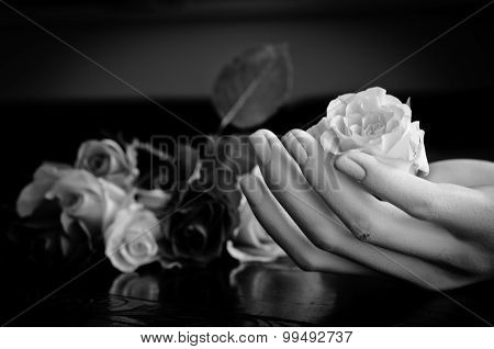 Hand Holding Rose - Protection Concept - Black And White