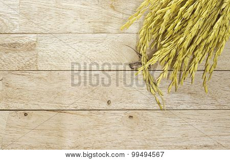 yellow paddy jasmine rice on wood background
