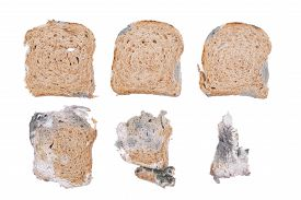 pic of smut  - Mouldy bread isolated on a white background - JPG