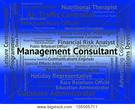 Management Consultant Represents Career Authority And Experts
