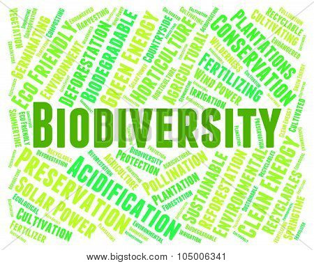 Biodiversity Word Indicates Plant Life And Animal