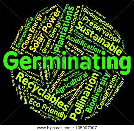 Germinating Word Represents Growth Cultivation And Cultivate