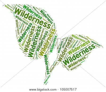 Wilderness Word Represents Uncultivated Land And Area