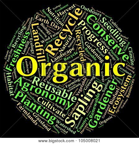 Organic Word Means Natural Healthy And Nature