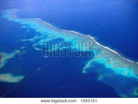 Vanua Levu Rainbow Reef