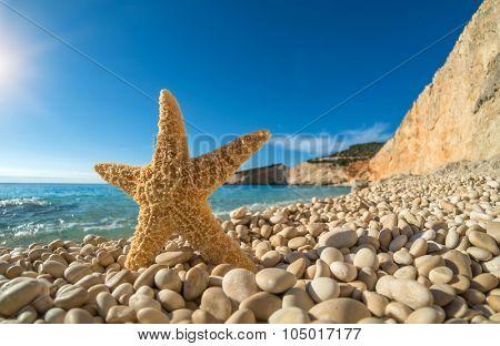 Starfish on  Porto Katsiki beach on Ionian Sea Lefkada, Greece