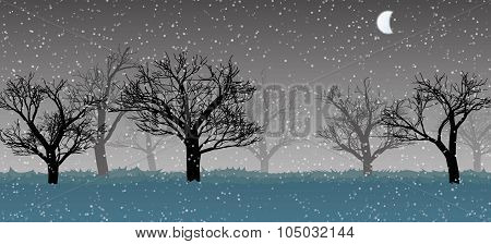 Forest In The Dark Mist, Snow, Trees Silhouettes