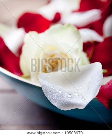 Rose flower petals and buds  in wooden blue bowl
