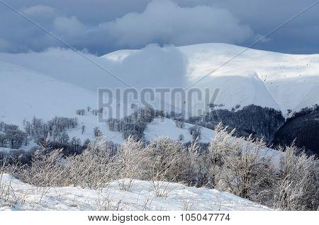 Frosty Winter Morning At Gemba Mountain Slope, Carpathians, Zakarpattia,western Ukraine