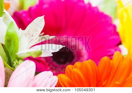 White Lily Flower In Fresh Gerberas