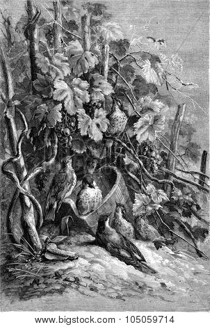 The rest of the grape pickers, vintage engraved illustration. Magasin Pittoresque (1882).