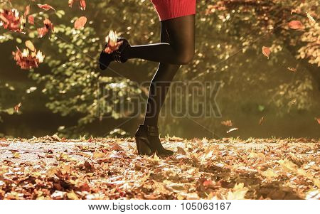 Autumn Fashion. Female Legs In Black Pantyhose Outdoor