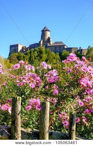 Beautiful Colorful Flowers And Old Historical Castle In Backgrou