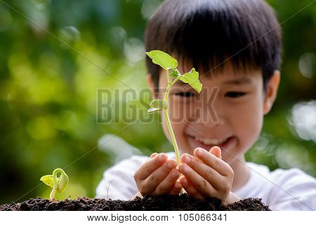 Boy Hold Seedling