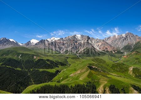 Qilian Mountains, with snow on the peak and forest at the bottom, in spring with clear blue sky
