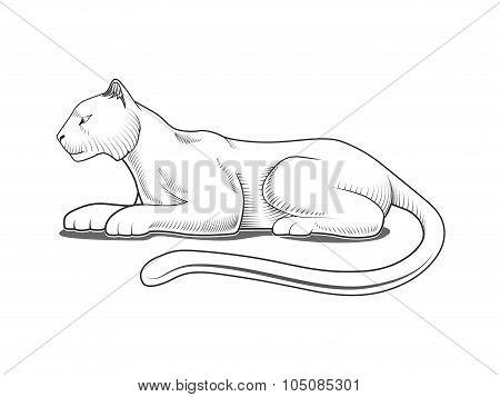 Panther engraving style emblem vector illustration
