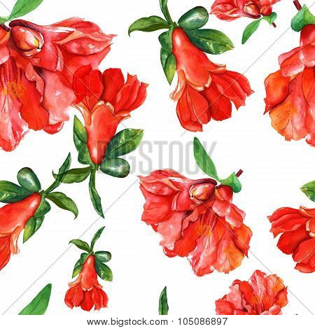 A vintage style watercolour drawing of the flowers of a pomegranate, seamless background pattern