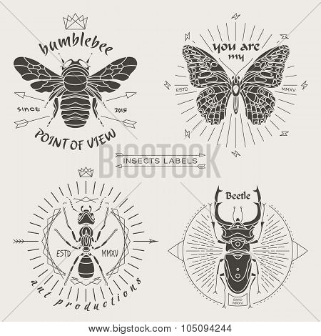 Insects Labels