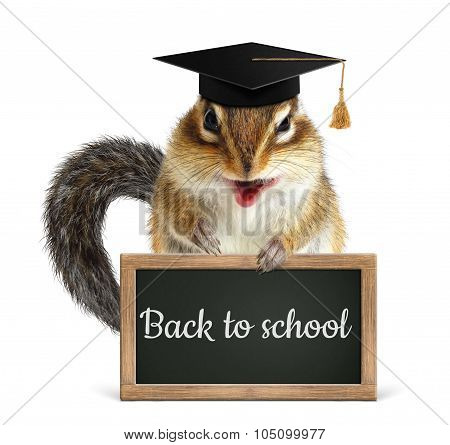 Funny Chipmunk Hold Blackboard, Back To School Concept