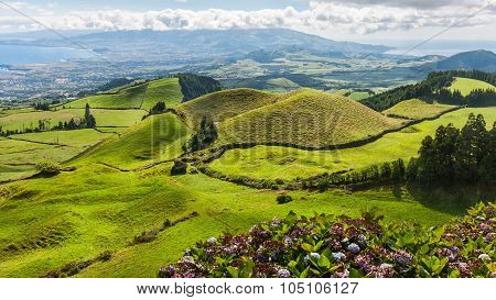 Hills And Fields Landscape In Sao Miguel, Azores Islands