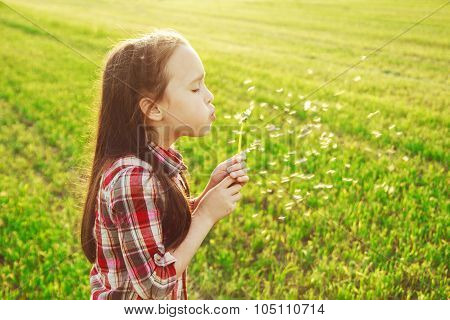 little girl blowing on the dandelion