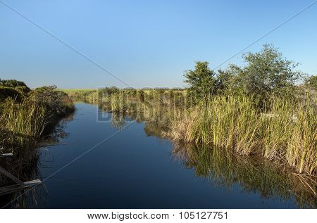 Freshwater Canal At Ft. Pickens, Florida