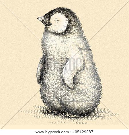 engrave penguin illustration
